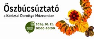 2014.10.11. Múzeumok Őszi fesztiválja